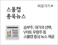 스몰캡 종목뉴스